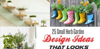 25 Small Herb Garden Design Ideas