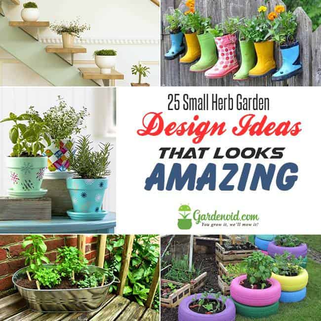 25 Small Herb Garden Design Ideas That Looks Amazing Gardenoid
