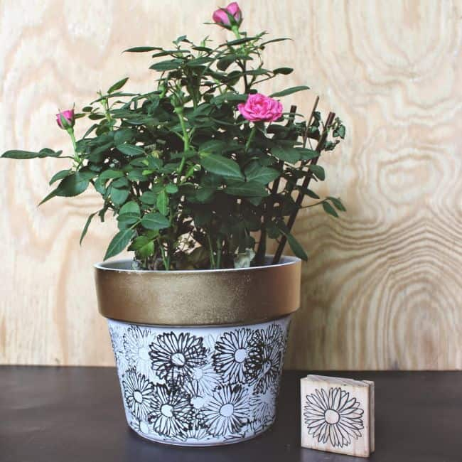 How to make Flower Pots at Home