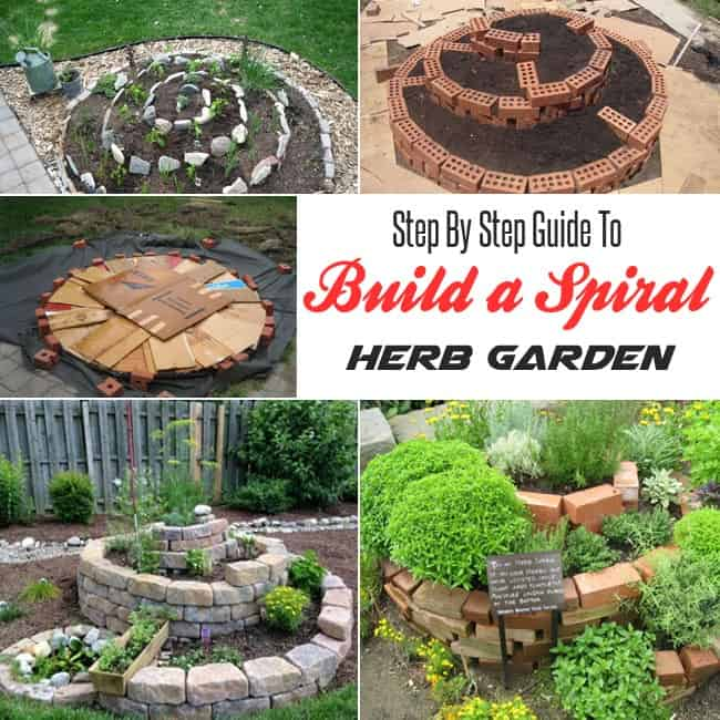 Step by step guide to build a spiral herb garden gardenoid for How to build a house step by step instructions