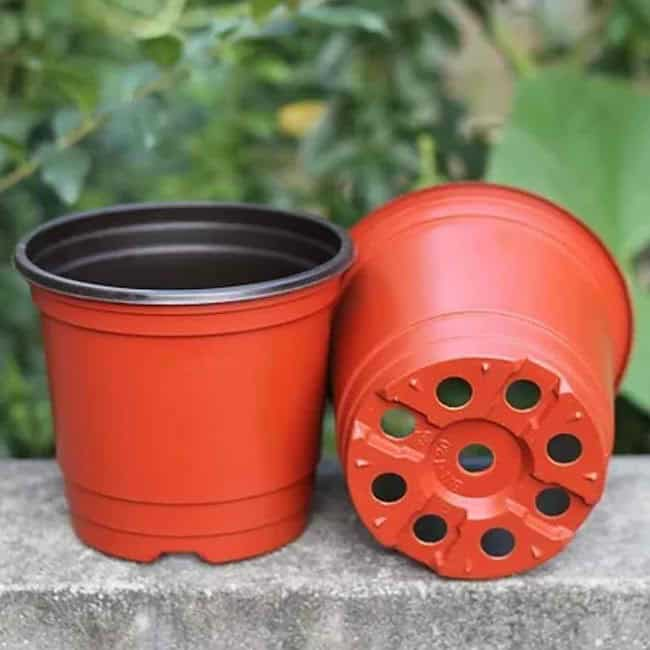 Indoor Plant Watering Devices