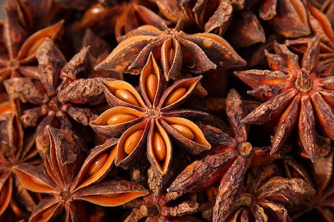 Star Anise Plant