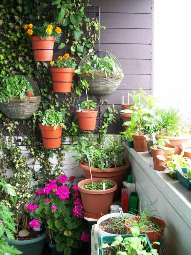 Charming Small Balcony Wall Planter Idea With Pots