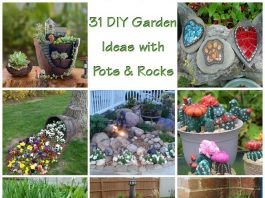 31 DIY Awesome Garden Ideas with Pots And Rocks