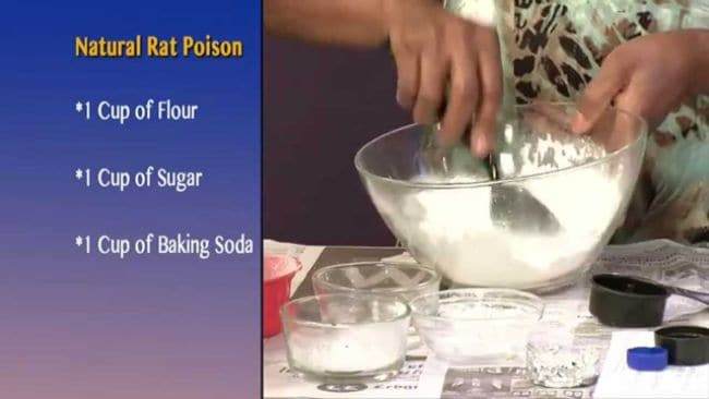 Baking Soda for Plants