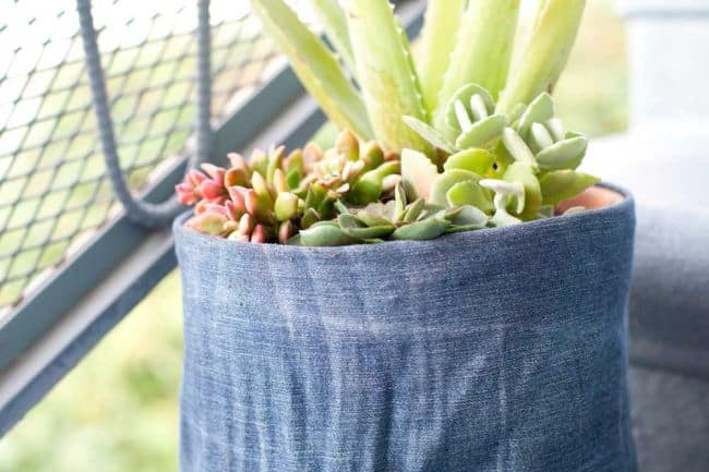 Recycled Jeans Planters