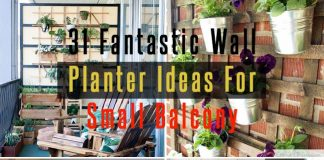Fantastic Wall Planter Ideas For Small Balcony