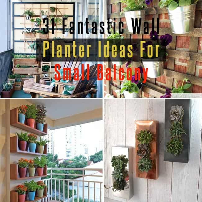 Wall Planter Ideas