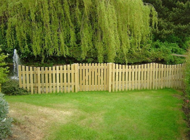 garden privacy ideas