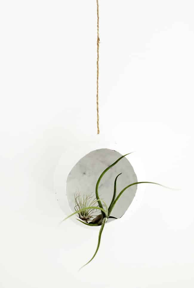DIY Paper Mache Air Plant Holder