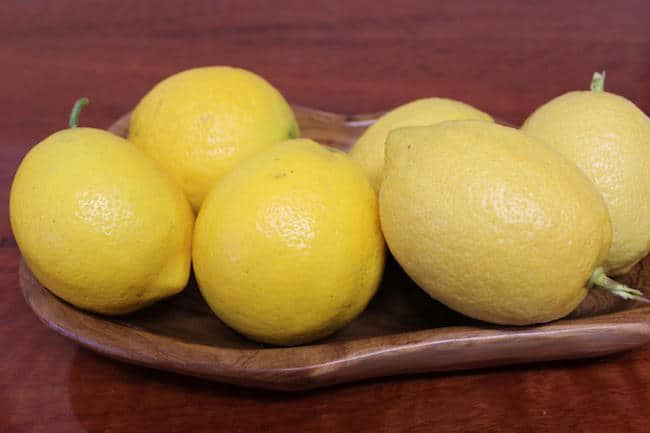 grow lemon tree from seed