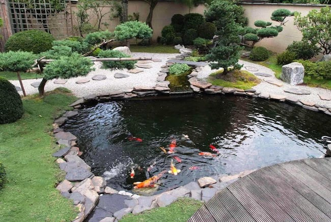 backyard landscape designs