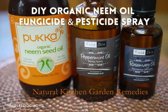 How to apply neem oil to plants