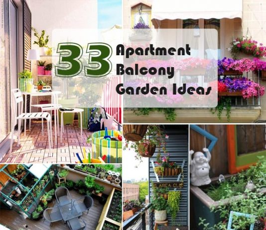 Apartment Balcony Garden Ideas
