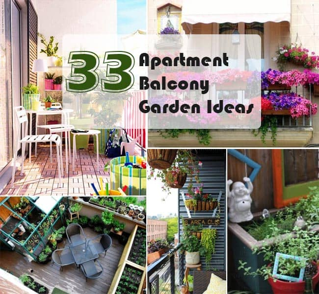 Apartment patio gardens on pinterest apartment garden for Small balcony garden ideas