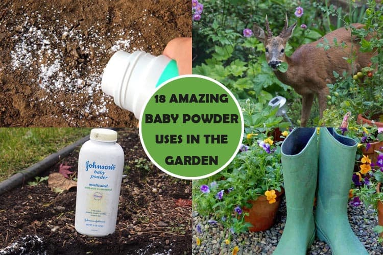 Baby Powder Uses