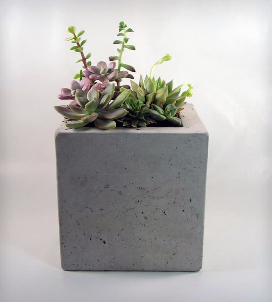 How To Make Cement Planters Diy Concrete Planters Gardenoid