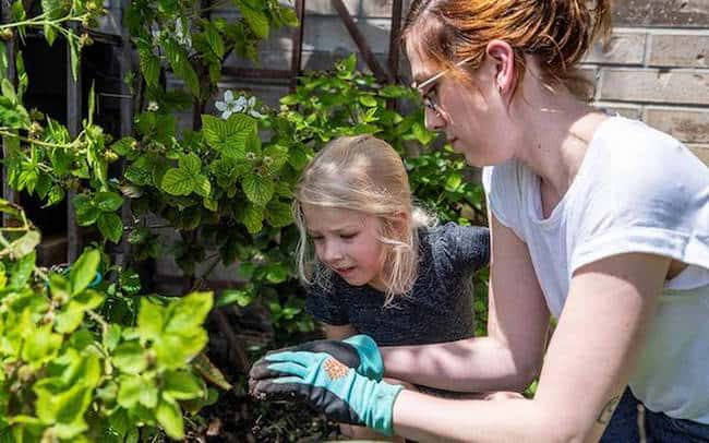 Why is Gardening good for you